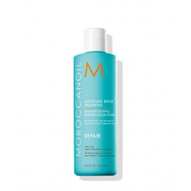 Shampooing Reparateur Hydratant 250ml